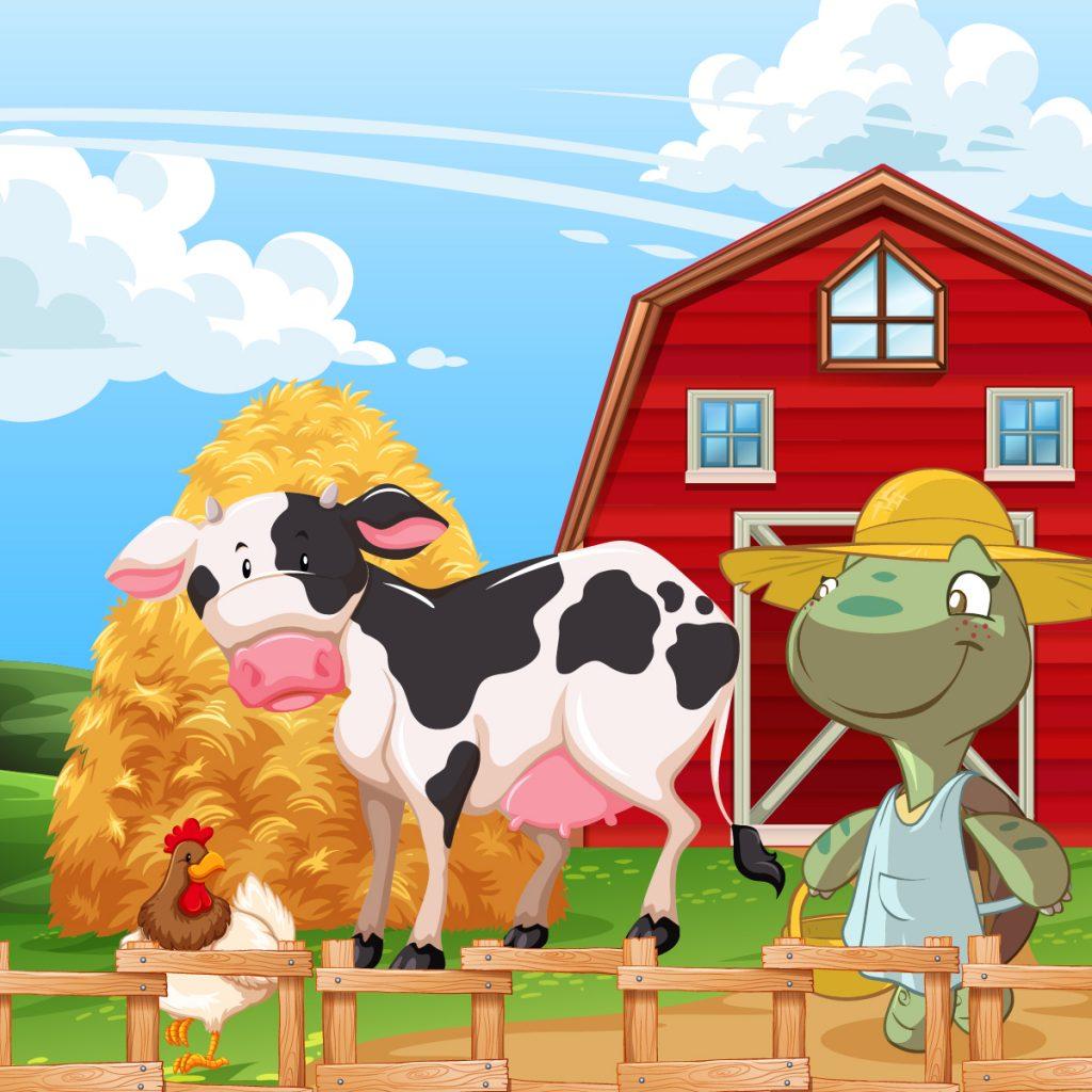Cosa mangiano gli animali da allevamento? Quando l'alimentazione fa la differenza.